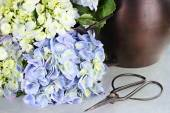 Cut Hydrangea and Gardening Supplies — Stock Photo