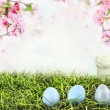 Easter Eggs in Grass — Stock Photo #67704329