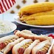 Hotdogs and Side Dishes — Stock Photo #77638728