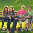 Five teenage boys and girls having fun in the park on sunny spri — Stok fotoğraf #62830219