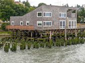 Abandoned Algae Covered Pier Logs with a Building on Stilts — Stock Photo