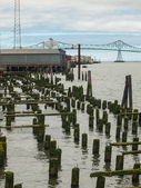 Abandoned Algae Covered Pier Logs with Astoria Bridge — Stock Photo