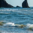 Detail of Haystack Rock at Cannon Beach Oregon USA — Stock Photo #57318269