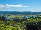 A View of the Astoria Oregon Area from the Astoria Column — Fotografia Stock