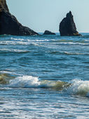 Detail of Haystack Rock at Cannon Beach Oregon USA — Stock Photo