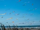 Colorful Kites Flying in Cloudless Blue Sky — Stock Photo