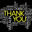 Thank You Word Cloud vector background, all languages — Stock Vector #65603281