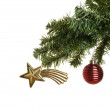 Closeup christmas ornaments on branch — Stock Photo #58207645