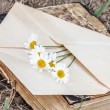 Envelope with flower — Stock Photo #56235517