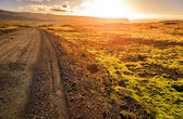 Gravel road through Westfjords — ストック写真
