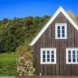 Traditional Icelandic turf house — Stock Photo #56560937