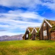 Traditional Icelandic turf houses — Stock Photo #59933683