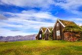 Tradiční islandské drnové domky — Stock fotografie
