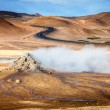 Steam vents in geothermal field — 图库照片 #63850049