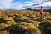 A hiker in an old moss-covered lava field — Stock Photo