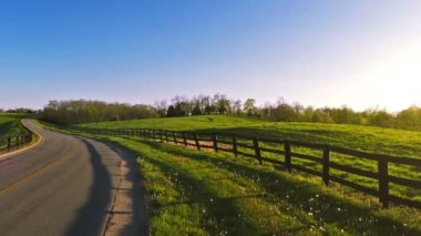 Bluegrass horse farm — Stock Video