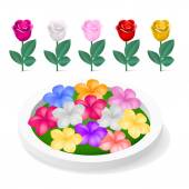Flowerbed with colorful flowers — Stock Vector