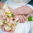 Hands of the bride and groom. — Stock Photo #54193491