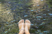 Young woman's feet — Stock Photo