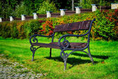 Old bench in park — Stock Photo