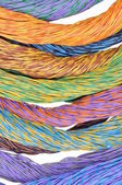 Colored wires of computer networks — Stock Photo