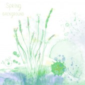 Spring spa background with herbs and grass — Stock vektor