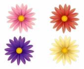 美丽的七彩花朵一套. — 图库矢量图片