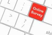 Online survey key — Stock Photo