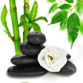 Zen pebbles. Stone spa and healthcare concept. — Stock Photo