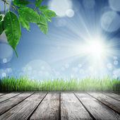 Fondo de naturaleza primavera con hierba — Foto de Stock