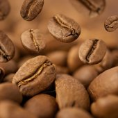Closeup of coffee beans with focus on one — Stock Photo