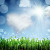 Spring nature background with grass and blue sky in the back — Stock Photo