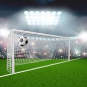 Soccer ball flies into the goal — Stockfoto