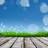 Spring nature background with grass — Foto de Stock