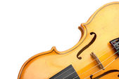 Classic brown violin — Stock Photo