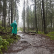 Young Hiker wearing green raincoat walking on Tatry forest path — Stock Photo #70816841