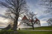 HDR image of the Bauska castle, Latvia — Stock Photo
