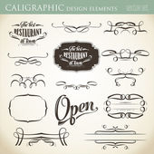 Calligraphic design elements to embellish your layout — Stock Vector