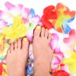 Women feets and flowers (pedicure tbackground) — Stock Photo #73227341