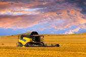 Reaping machine or harvester combine on a wheat field with a very dynamic sky as background — Stock Photo