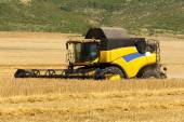 Reaping machine or harvester combine on a wheat field — Stock Photo