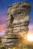 Stone forest sunset — Stock Photo