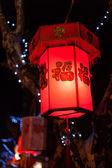 Exhibit of lanterns during the Lantern Festival — Stockfoto