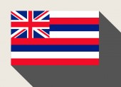 American State of Hawaii flag — Stock Photo