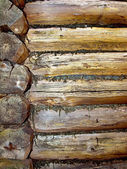 Part of the old dilapidated log cabin. — Stock Photo
