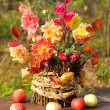 Bouquet of autumn flowers — Stock Photo #56007359