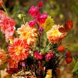 Bouquet of autumn flowers — Stock Photo #64785607