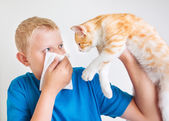 A boy with cat allergy — Stock Photo