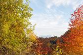 Autumn landscape in the mountains of Lago-Naki — Stock Photo
