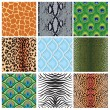 Set of seamless textures of animal skins, — Vector de stock  #59298555